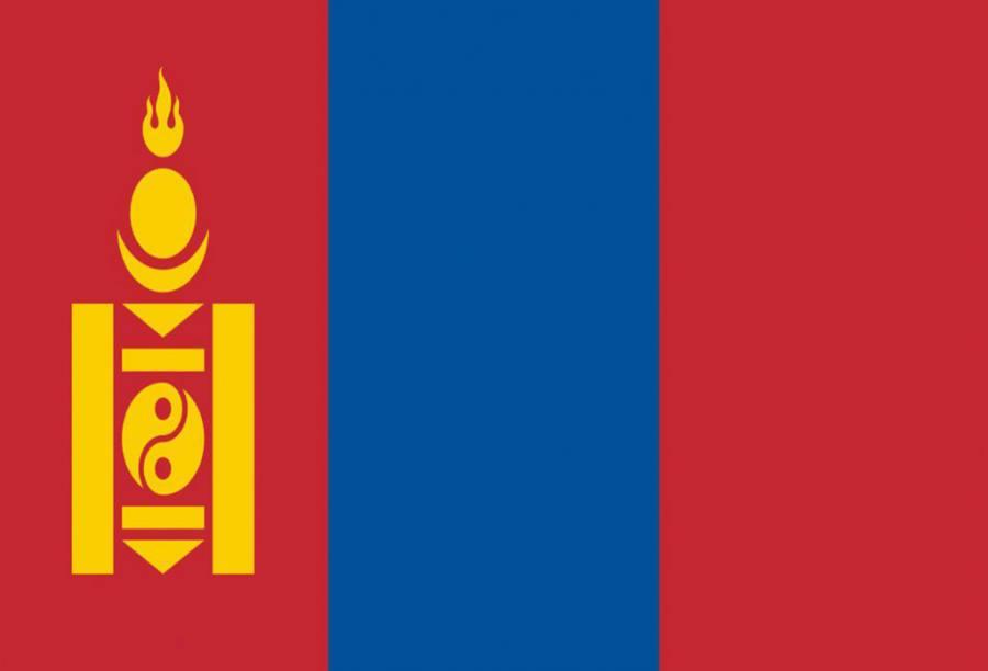 蒙古旅游签证(加急)